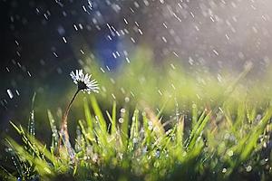 """四川端午小长假雨水几乎""""包全场"""" 下周雨水还是常客"""