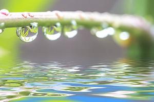 成都夏至雨兮兮 未来几天也有雨