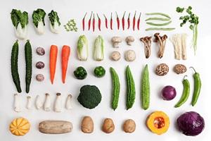 """探访蔬菜种质与品种创新四川省重点实验室:破译基因密码 让蔬菜变成""""更好的自己"""""""