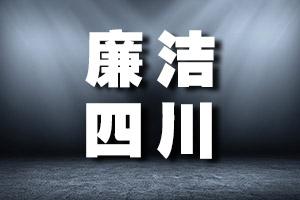 四川师范大学继续教育学院原院长、网络教育学院原院长蒋华接受监察调查